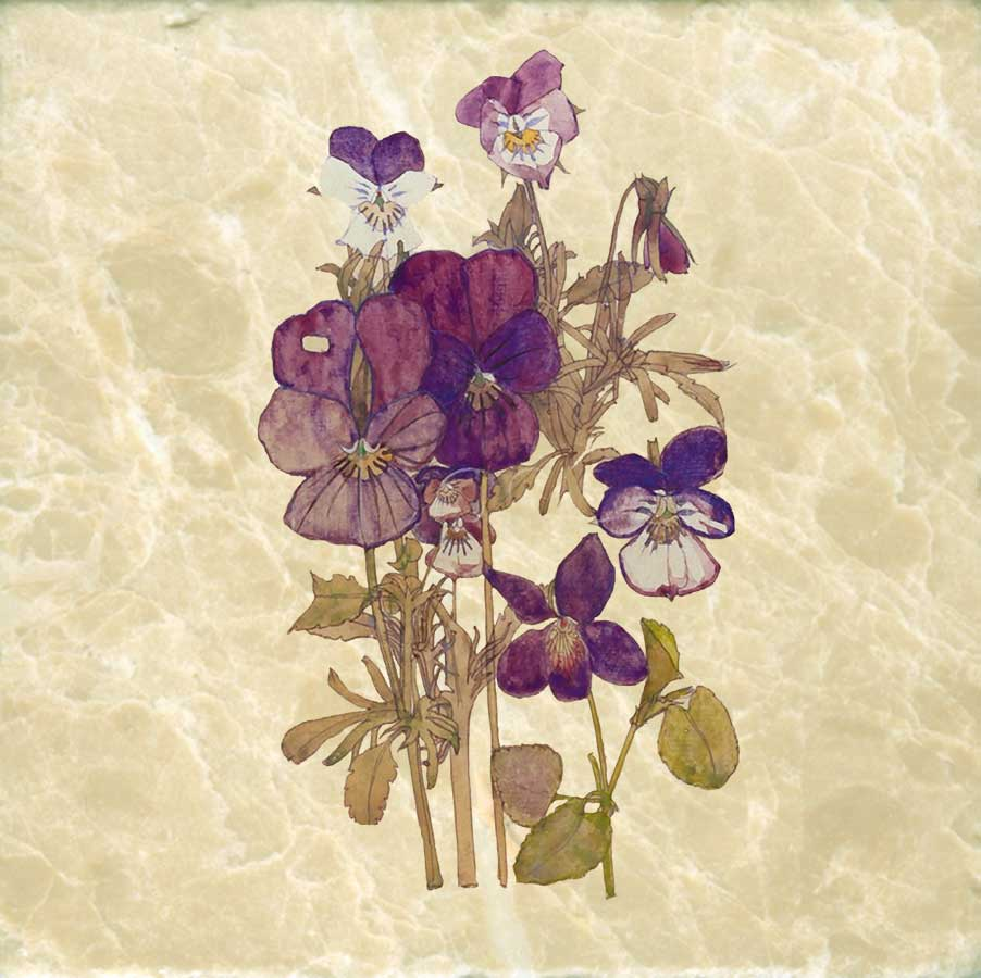Wood violet and pansy, Charles Rennie Mackintosh, 6 inch tumbled marble