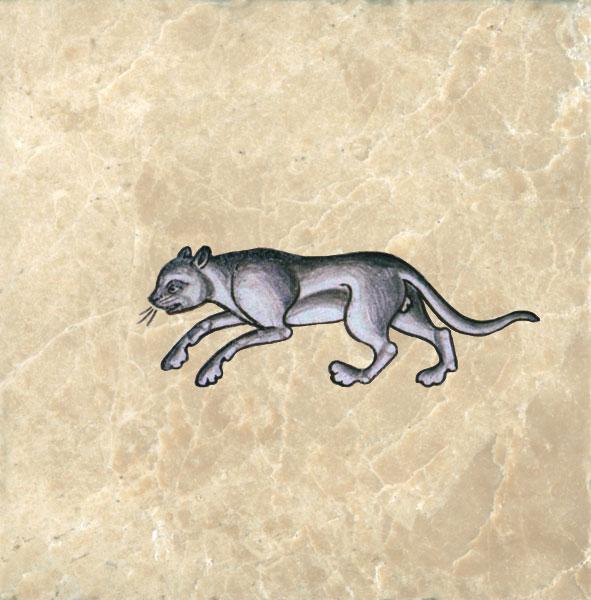 Prowling cat from De Medicina Ex Animalibus