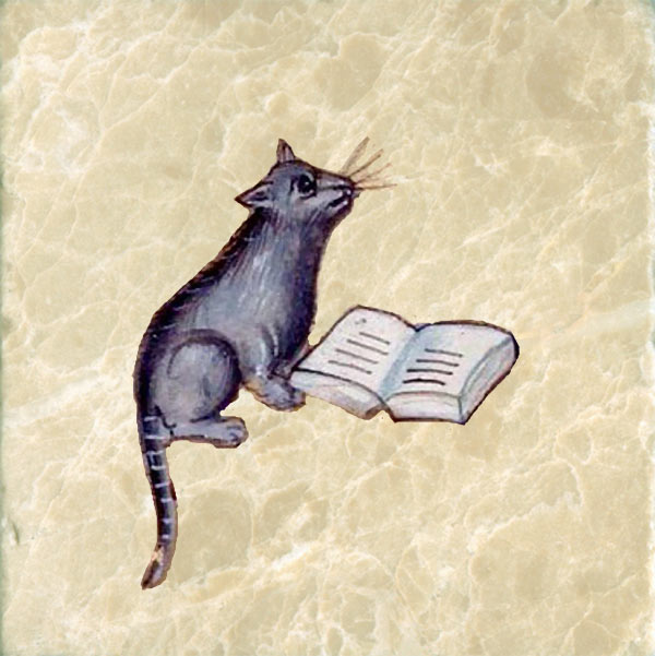Abbeville cat reading a book, 15th century