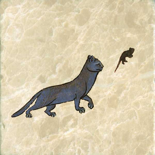 Early medieval blue cat, following a mouse
