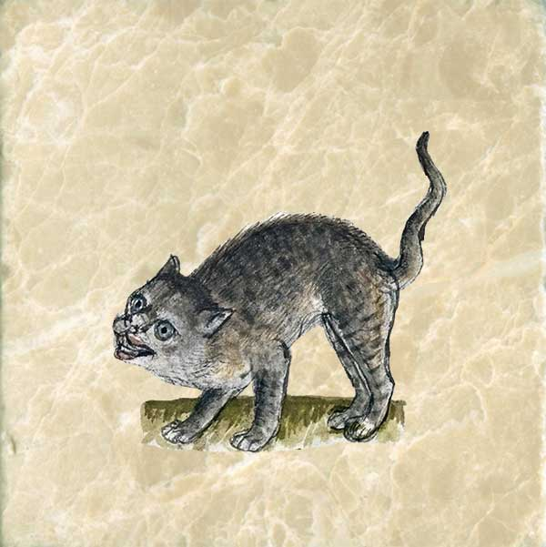 Cat from German Book of Nature, 1434