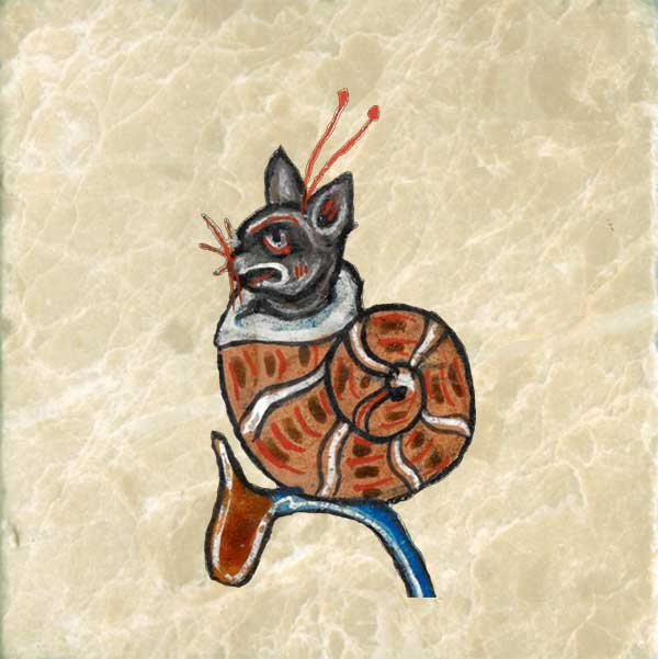 Medieval cat in a snail suit