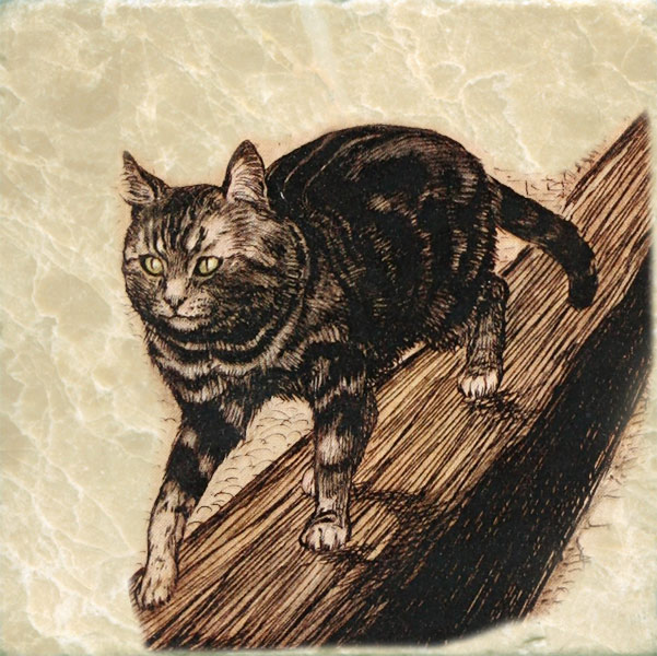 Fairy Tales of the Brother's Grimm Cat, Arthur Rackam, 1916