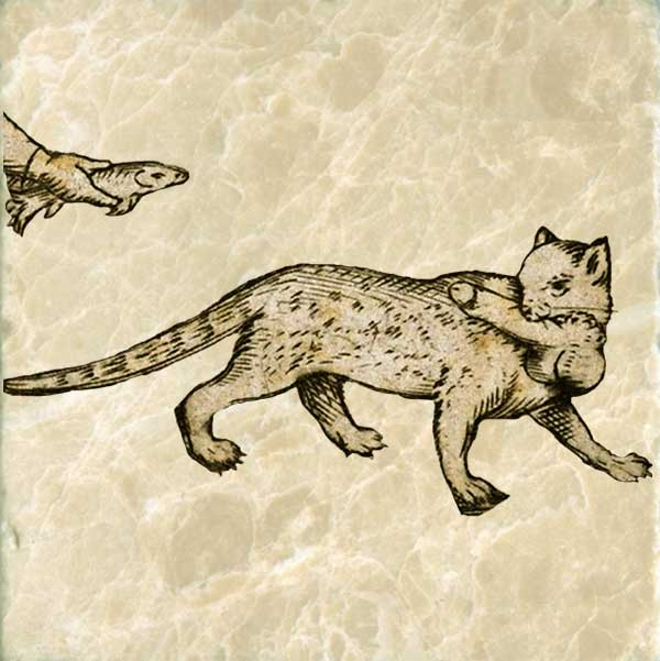Medieval cat, stealing family jewels