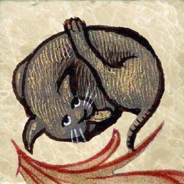 Lyon manuscript 6881 cat