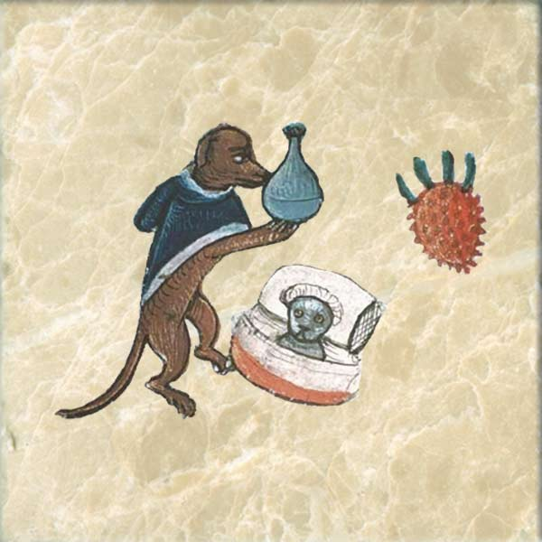 Medieval dog treating a cat for melancholy.