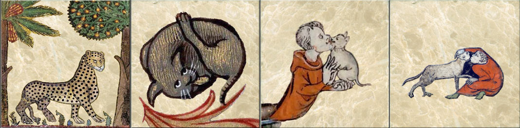 Medieval cat tiles. From left: Palerma Palazzo Dei Moranii, 12th century cat with attitude; Lyon manuscript 6881 cat; Medieval cat lover