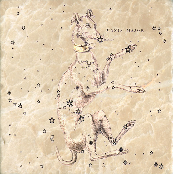 Star map of Canis Major.