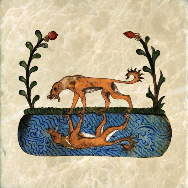 Aesop's Fables, the Dog and his Reflection, Kalila and Dimna.
