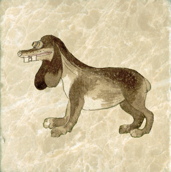 Cosmological Dog 1555