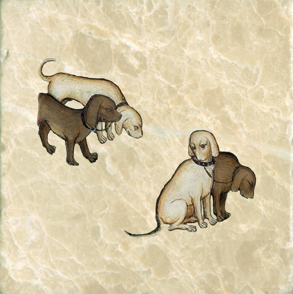 Medieval hunting dogs: Coupled rachers.