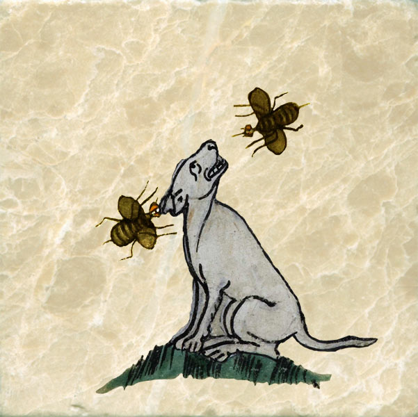Medieval dog attacked by bees.