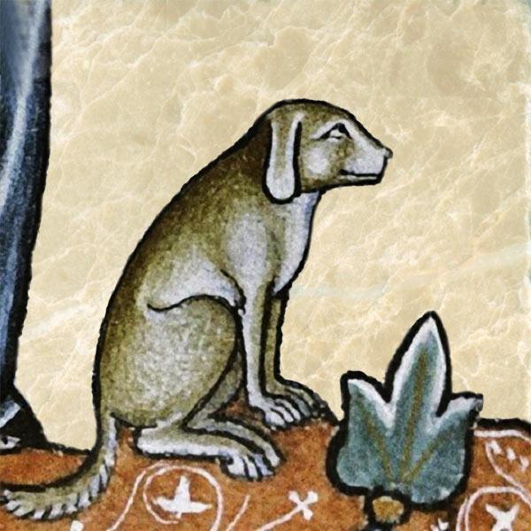 Medieval dog, attending.