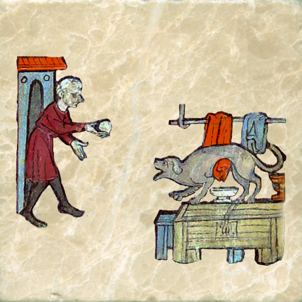 Medieval dog playing fetch with a ball.