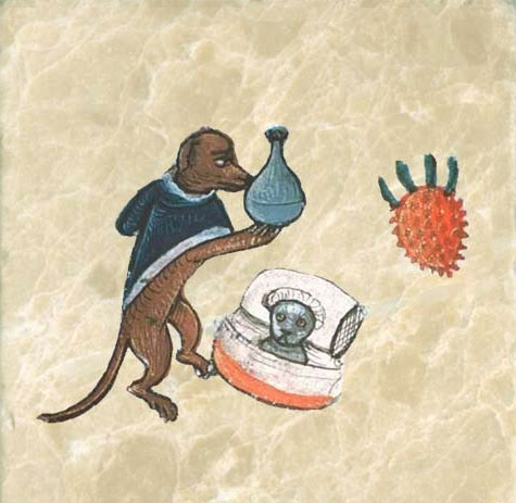 Medieval dog treating a cat for melancholia, probably with milk thistle.