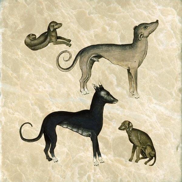 Tudor bestiary dogs, 1520.