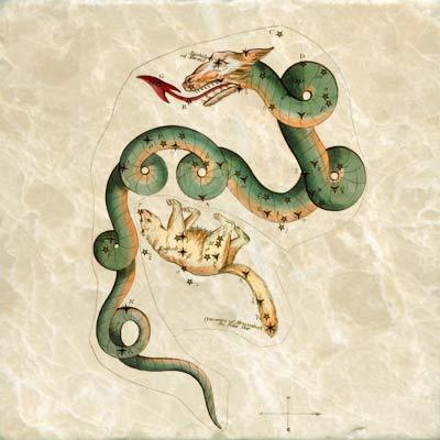 Draco and Ursa Minor constellation card, 1825