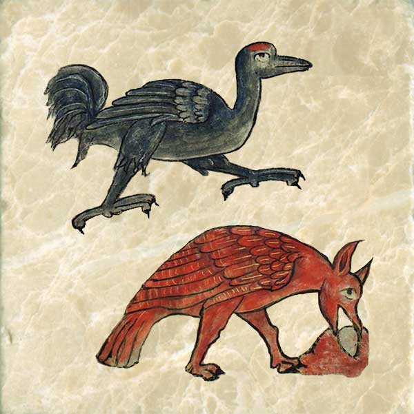 The ostrich is also flight-challenged, as it cannot fly at all. It lays its eggs on the ground and covers them with sand.  Emus are disrespectful of ostriches.