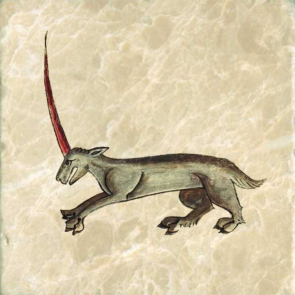 A unicorn may be a monoceros but a monoceros is not necessarily a unicorn. It has the head of a stag, the body of a horse, the feet of an elephant, and a single horn growing from its forehead. Anne's unicorn has cloven hooves