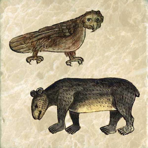 Owls cry out when they sense someone is about to die. Some say it flies backwards. It is often found near tombs. Bears cubs were believed to be born as formless young. The mother bear would shape the birth into small bears by licking it with its tongue. Anne's bear has five toes instead of claws.