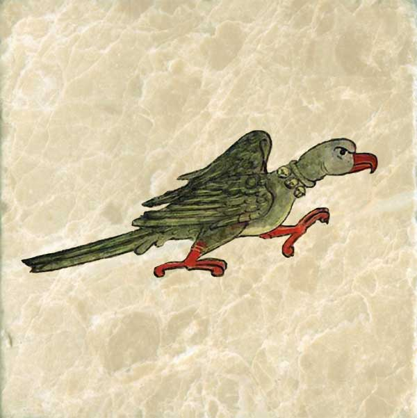 Anne's bestiary tells us that, when teaching a parrot to talk, one should hit it over the head with an iron bar to gain his attention.