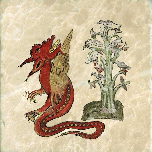 Doves gather in the peridexion tree because the fruit is sweet and they are safe from dragons, who fear the tree's shadow and stay on its unshaded side.