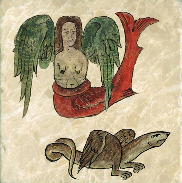 Sirens, Bestiary of Anne Walshe. There are two kinds of sirens and Anne's teachers thought it important that she should know both. The winged siren is a deadly creature, half human, half fish or bird.  Early sources tell us the siren is always female. Most sirens have wings; they charm sailors with their beautiful singing whereupon the sirens attack and tear their flesh. Anne's siren is missing arms. The Arabian siren is a winged serpent so poisonous that death follows their bite so quickly that their victim feels no pain.