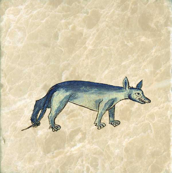 Wolf from the Bestiary of Anne Walshe.  Anne has enhanced the wolf's teeth to make him appear fiercer.