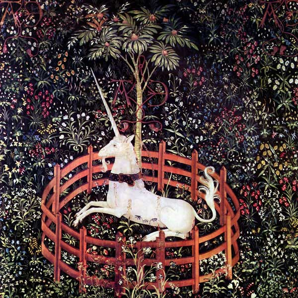Captive Unicorn