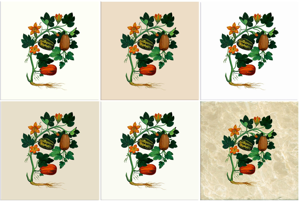 Medieval herb and vegetable tiles, 16th century Italy, Ulisse Aldrovandi