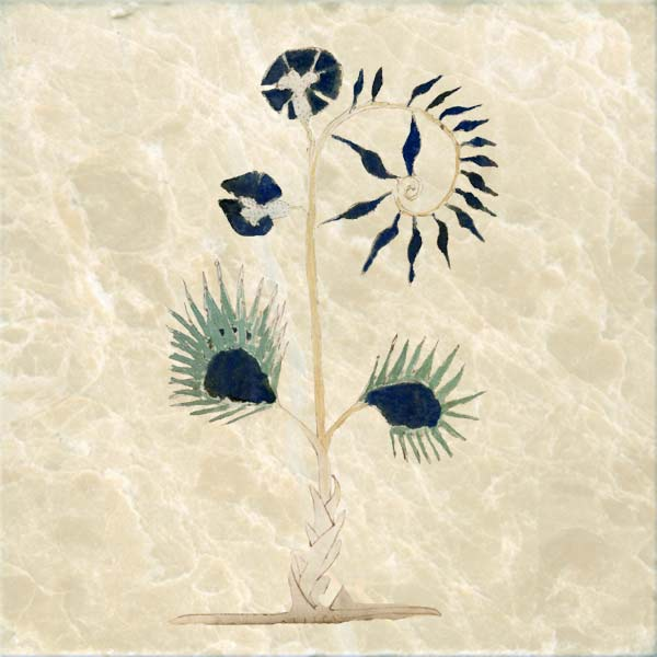 Voynich Manuscript tiles:  Medieval tiles for kitchen or backsplash.