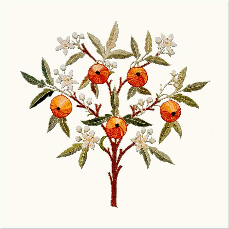 May Morris Orange Tree tile, Wheat background