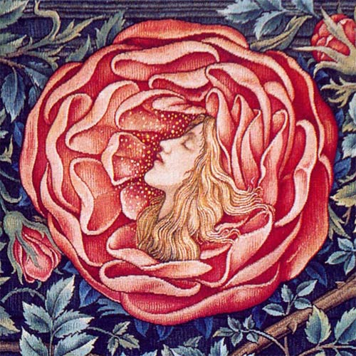William Morris Tile: Romance of the Rose backsplash detail