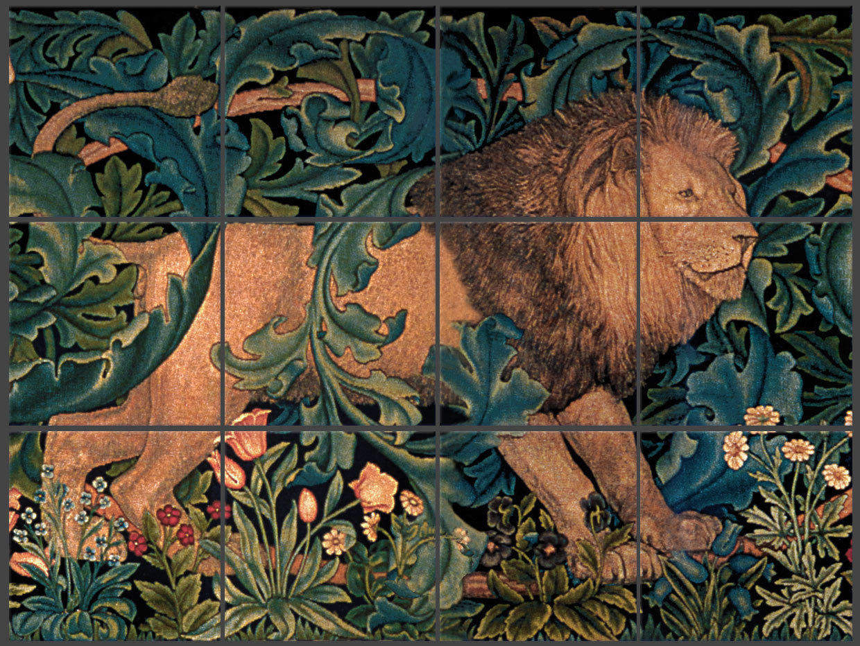 The Forest, Lion