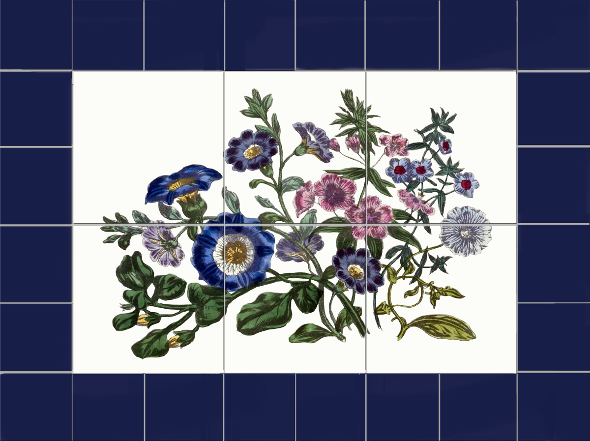 Victorian Botanical Backsplash, Ladies' Flower-Garden of Ornamental Annuals