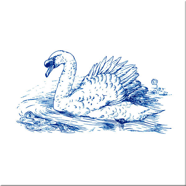 Detmold Aesop's fables, swan